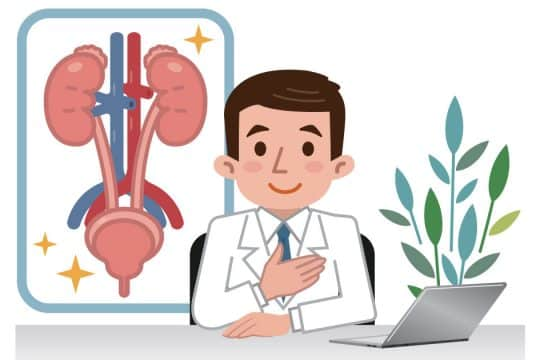 dokter spesialis urologi